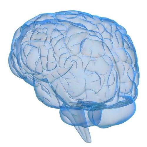 Glaucoma Brain degeneration Restore Vision Clinic (1)